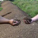 Soil Summit